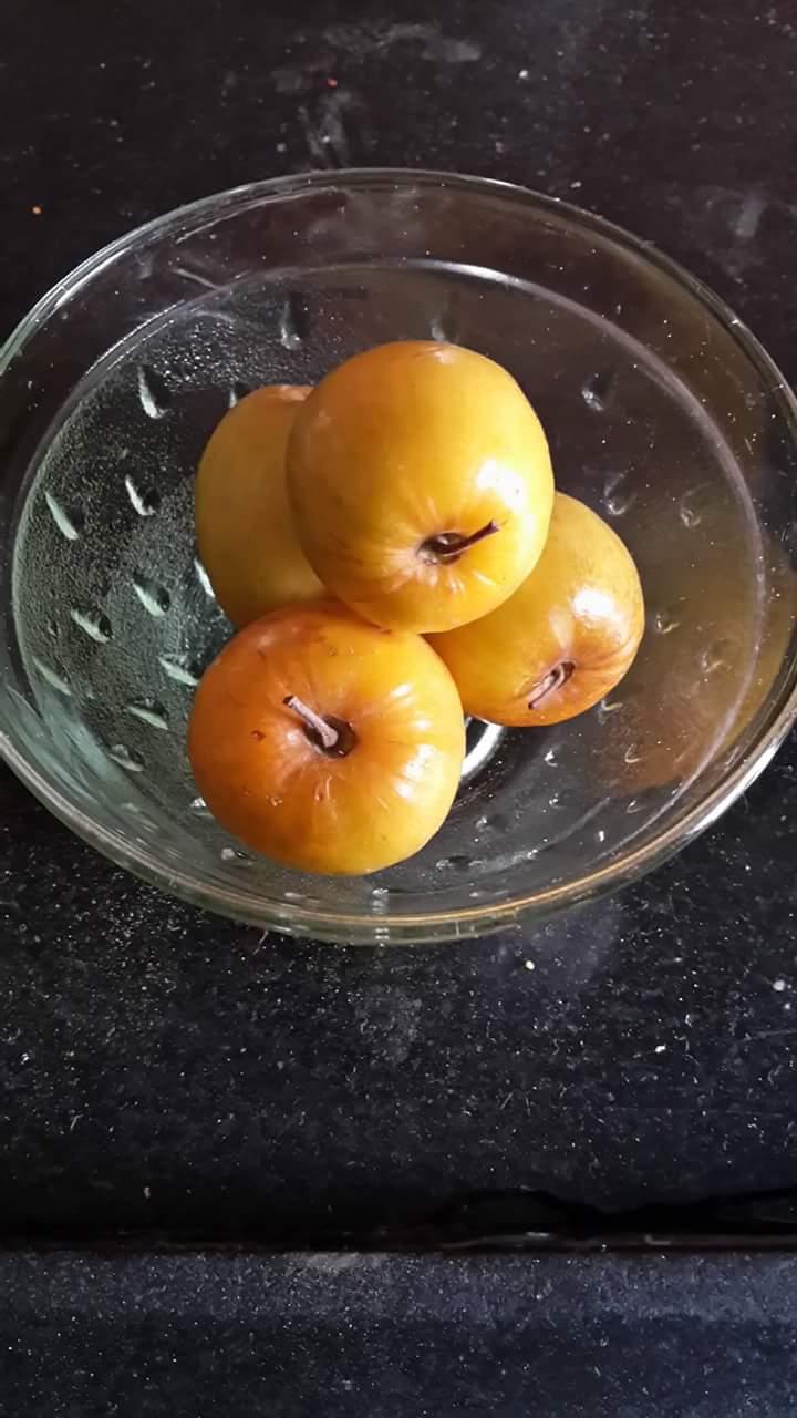 Ber fruit benefits – Shilpsnutrilife