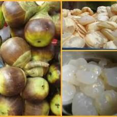 Tadgola a great summer fruit