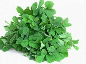 Fenugreek (methi leaves) in fever
