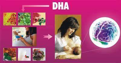 DHA in pregnancy and lactation