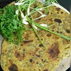 Garlic Coriander Paratha