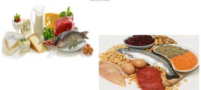 Warming protein foods