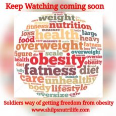 Freedom from obesity the soldier way